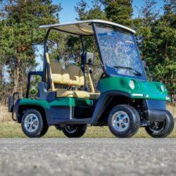 Golfwagen 447